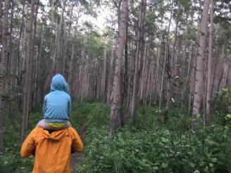 Hiking in Charlie Lake Provincial Park